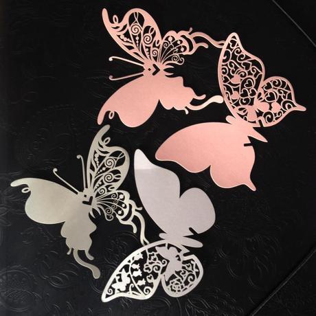 Jmenovky motýl,