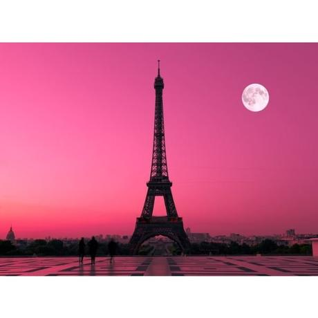 Fototapeta, Paríž, 315 x232cm,