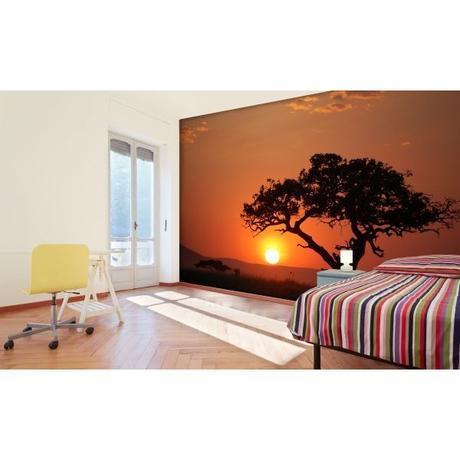 Fototapeta, Západ slnka, 315 x232cm,