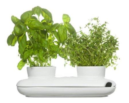 Kvetináč Sagaform Herb Duo Pot 27cm,