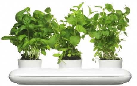 Kvetináč SAGAFORM Herb Trio 40cm,
