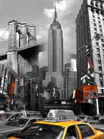 Obraz na plátne 40x50cm New York Dominanty čierno-,