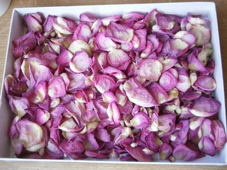 Lupene ruži - sušené cca 500 ks,