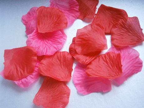 Lupienky ruží 1000 ks,