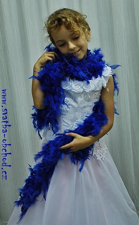 Boa královsky modré (pravé peříčka),