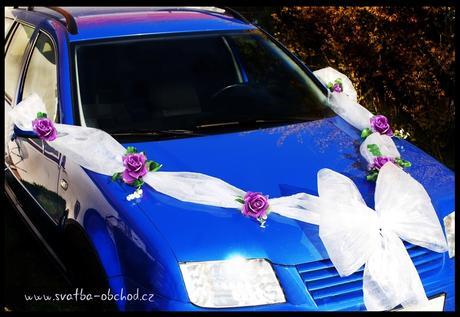 Fialové růže + vliselinová mašle,