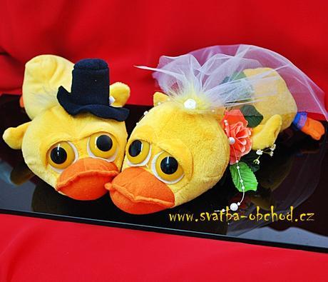 Kachničky ve svatebním - na auto,