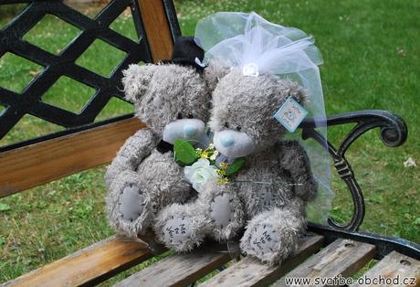 Medvědi hrubosrstí (č. 25),