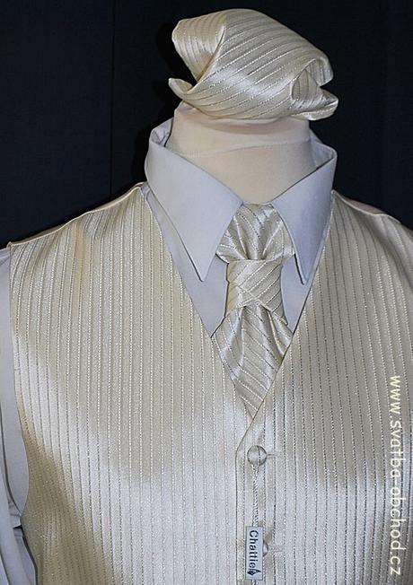 Pánská vesta - šampáň (č. 303), 56