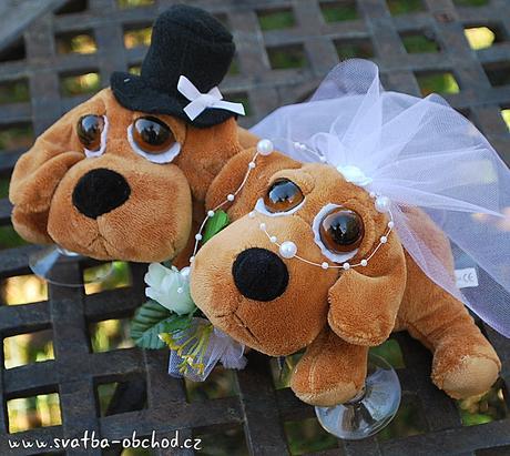 Pejskové ve svatební na auta ,