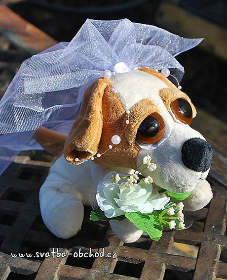 Pejskové ve svatebním - na auta,