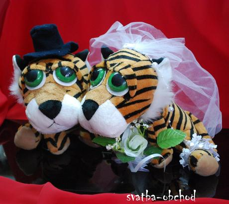 Tygříci na svatební auta,