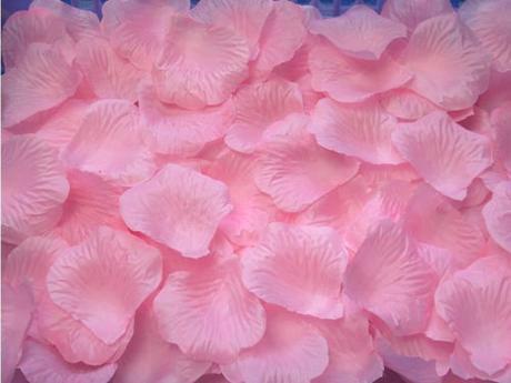 růžové okvětní lístky,