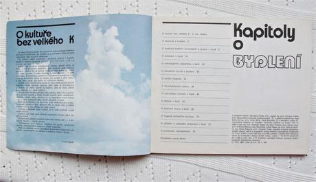 Brožúra Kapitoly o bydlení,