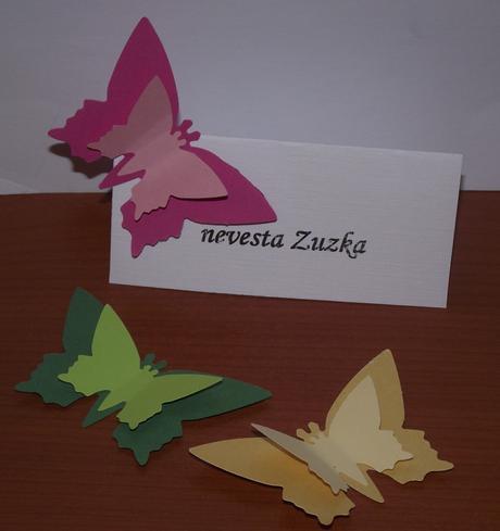 Set pre kreatívne nevesty - menovky s motýľom,