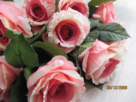 růže růžové,