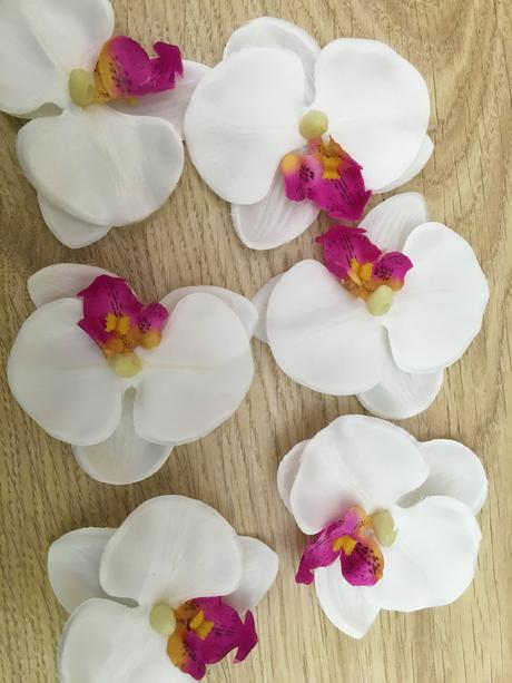 30ks orchidei ,