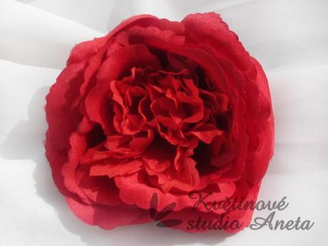 Květ růže červený Mary Rose,