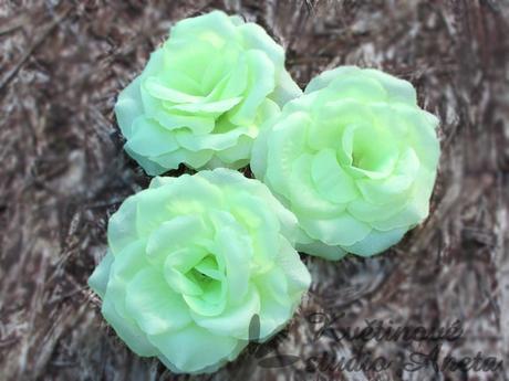 Květ růže zelený,