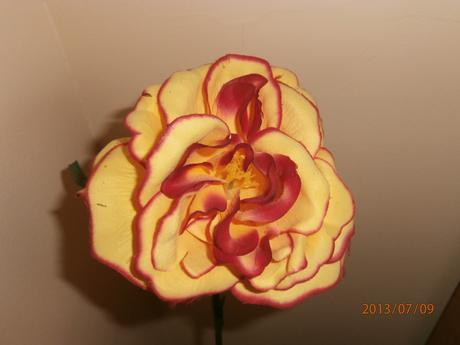 Kvet-Ruža,