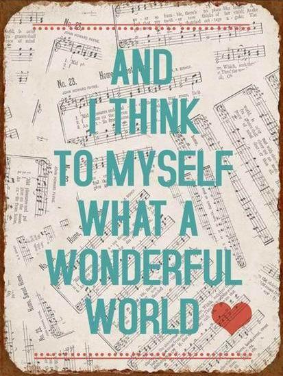 "Plechová ceduľa ""Wonderful world"","