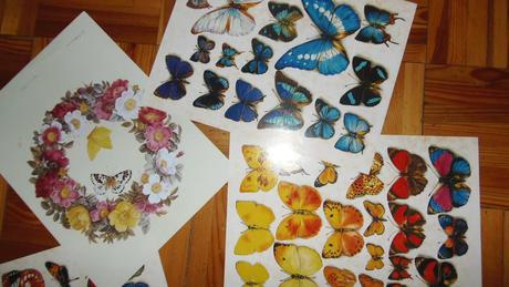 obrazy na zaramovanie,motyle,