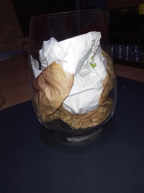 Skleněná váza / dóza,