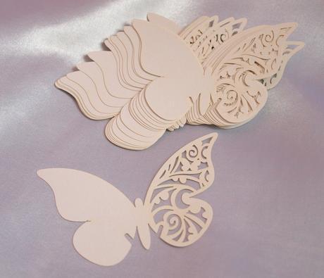 Jmenovky - motýli,