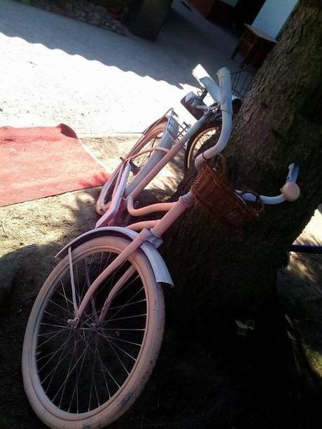 Růžové kolo,