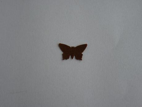 Konfety motýlci hnědí,