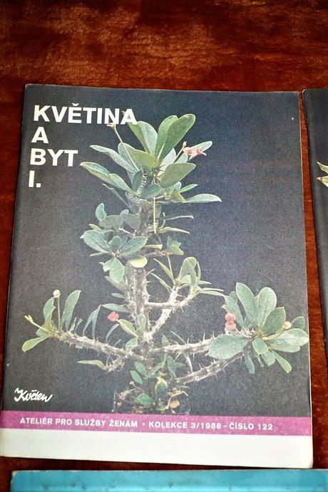 Brožúry Květen - rastliny v byte i vonku- kus/0,25,