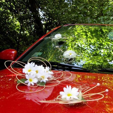Dekorace na auto - květ a 7 motýlků - s kopretinou,