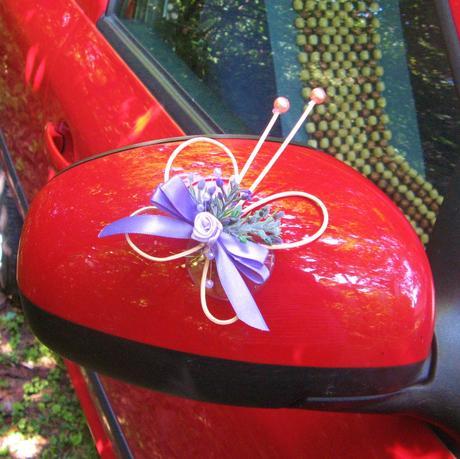 Motýlek na zrcátko auta,