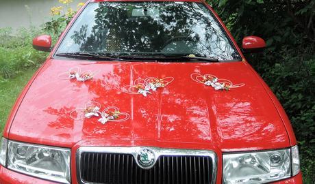 """svatební auto - """"Srdíčka v barvách podzimu"""","""