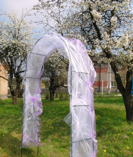 svatební slavobrána (základní),