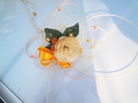 Věneček a motýlci,