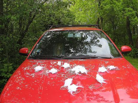 "Výzdoba auta ""Šípková růže - bílá"","