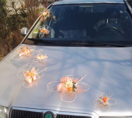 Výzdoba svatebního auta- 7 motýlů,
