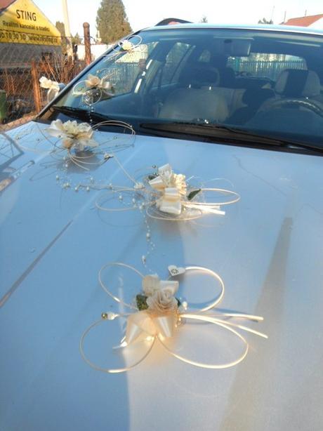 Výzdoba svatebního auta- motýlci ivory perličkoví,
