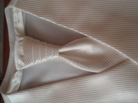 Svadobna vesta + francuzska kravata, 50