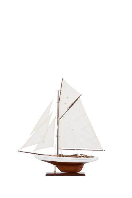 Dekoratívna plachetnica  Paulownia,