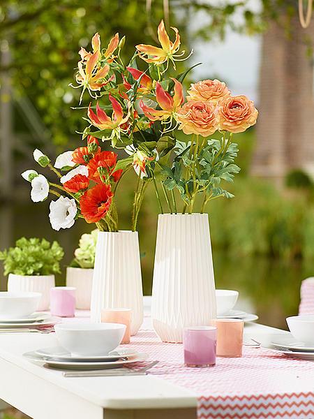 Hodvábny kvet  glorisa ,