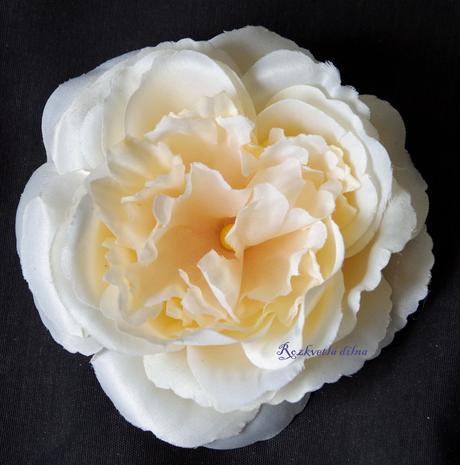 Brož či sponka růže,