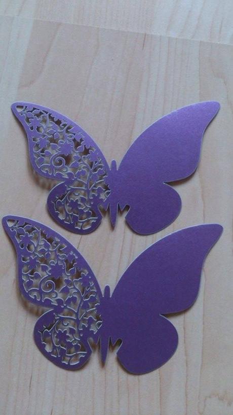 Menovka motýľ fialová,