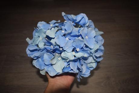 Květy Hortenzie,