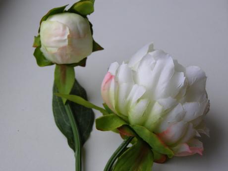 Veľké cyklaménové pivonkové kvety,