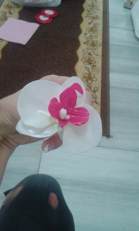bielo ružove kvety,