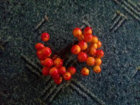 Červené bobulky, kuličky na drátku,