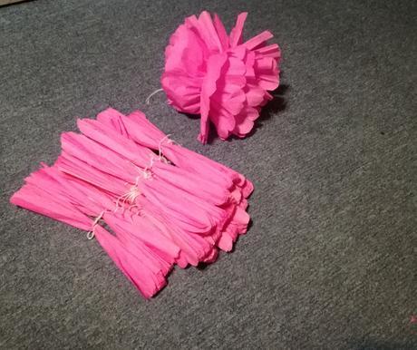 Růžové pompony,