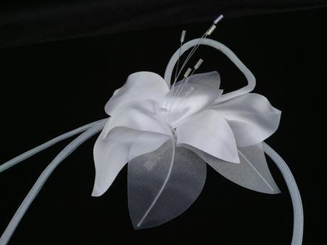 Kvet 008010,
